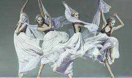 【女子零基础舞蹈体验课】芭蕾形体&Lady Sway