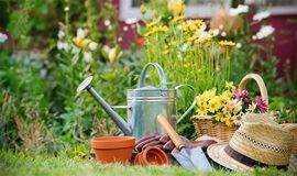 Get Hands Dirty | 与植物对话,Get植物开花结果的奥秘与技能