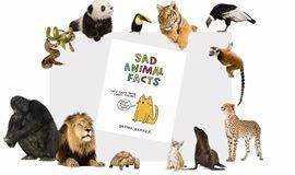 百科沙龙讲座:你不可不知的那些有趣的动物冷知识