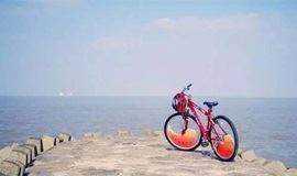 【海岛骑行】6月2日|骑行上海最后的花园小岛——横沙岛