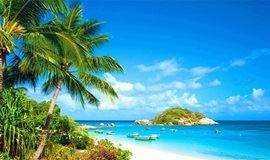 暑假去哪儿 | 雨林探险、赶海拾贝、扬帆冲浪、海边露营……海南研学体验营重磅来袭!