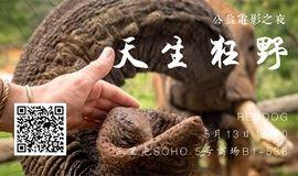 母亲节公益电影放映与分享会 - 天生狂野 (悼念一位伟大的母亲,小象孤儿院的创始人不久前离开了)