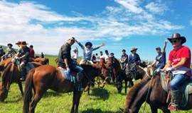 最美秋景 坝上草原 骑马,神仙谷七彩森林,免费烤全羊,篝火狂欢!