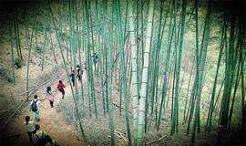 【7月8号从化吃鸡】广州最美乡村 从化星溪漫步竹海 徒步穿越12KM