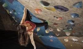 【单身星酋】6.17下午  体验小众健身,让你高处不胜high  室内攀岩体验