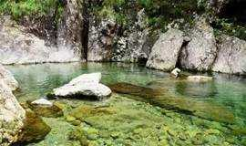【人间仙境】7月28日   仙居丽人谷溯溪,溪边民宿尽情玩水