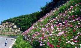 【遇见 · 百花山】京西百花山,百花草甸登山赏花摄影
