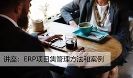 ERP项目集管理方法和案例