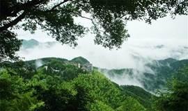 【周末】徒步莫干山,赏漫山竹海,走幽深蒋公道(1天)