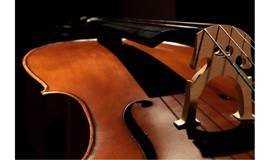 人群中低声的大提琴[大提琴成人零基础体验课]