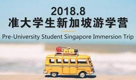 准大学生新加坡游学营 Pre-University Singapore Immersion Trip