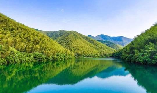 【周末】静心之旅:走竹海古道,登苏南第一峰,漫步宜兴竹海(1天)