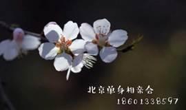 【单身相亲】北京7月8日后每晚朝阳门单身美女帅哥碰碰桃花运
