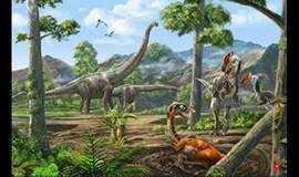 """【亲子-科普】小小地质家----地球故事开篇序""""解密化石"""""""