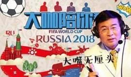 """央视网世界杯球迷日之 """"大咖陪你看""""决赛免费观赛活动"""