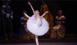 广州芭蕾舞团导师体验课