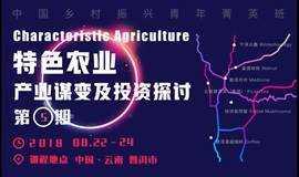 农业考察:云南普洱特色农业产业谋变及投资探讨