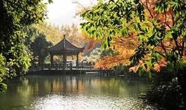 7.28 漫步杭城最美九溪十八涧,品龙井茶, 逛十里琅珰