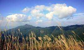 徒步 | 大南山精华穿越,看尽醉美高山草甸