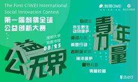 第一届刺猬全球公益创新大赛
