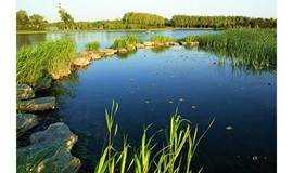 徒步大兴最美公园——念坛公园,登幽州台、西溪倩影、金色沙滩