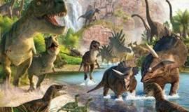 【西西弗书店】恐龙挖掘现场