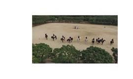 王子马术骑马去啦
