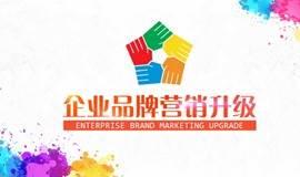 陈村人脉圈第二期企业品牌营销升级会
