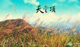 【去旅行.2周年庆 49元】11.3日挑战广州最高峰 从化天堂顶
