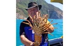 新西兰海钓分享会—纳尔逊以及凯库拉
