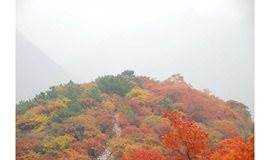 【多彩户外】10.13日坡峰岭休闲摄影穿越