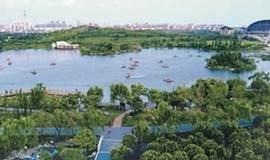 徒步浦江郊野公园,享受都市森林中的滨水栈道