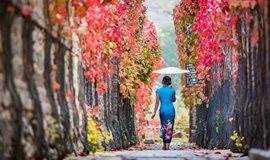 【周末周边·1日赏秋】秋醉古北水镇*一场红透了星空的浪漫之旅