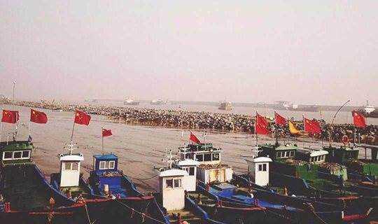 10.20 坐渔船,看大海,徒步距离上海最近的生态岛-大洋山岛