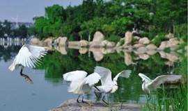 要交友来徒步,9月22日徒步长沙洋湖公园,2公里水上回廊栈道