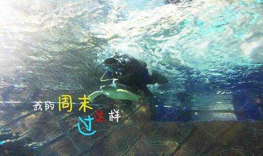 【10月20-21日】【海洋馆潜水 + 夜宿】抱着海龟潜水,看着鱼儿在身边游走,体验动感5D电影,睡在海底隧道,这个周末很好玩