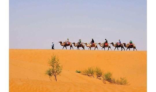 【中秋节】活动 希拉穆仁大草原 骑马|派对+库布齐沙漠 骑骆驼|沙漠穿越(吃住行门票等费用全部包含)