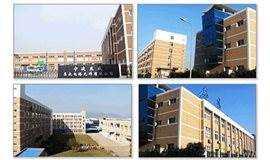 宁波北仑标杆企业交流会(第十期):宁波东盛集成电路元件有限公司