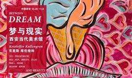 """西安当代美术馆:瑞典艺术家克里斯·库伦格林的""""梦与现实""""展览开幕"""
