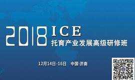 ICE台湾托婴落地三日精华班