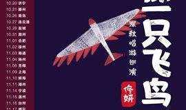 11.9 像一只飞鸟 佟妍深秋唱游巡演上海站