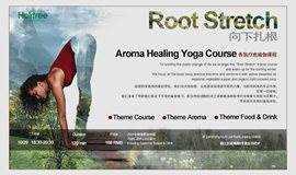 Root Stretch 向下扎根 | Yoga Course 香氛疗愈瑜伽课程