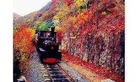 周六/日:双龙峡红叶,小火车,百潭瀑布,一日户外活动
