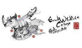 2018 中国(广州)国际纪录片节影迷沙龙——BBC纪录片《大猫》展映活动