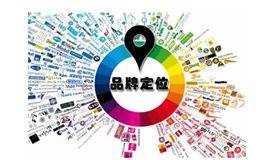 品牌资产构建与品牌名搜索占位的营销策略