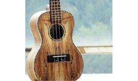 【冬】尤克里里 一个你学就会的乐器|尤克里里体验课