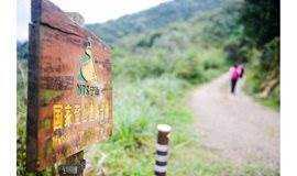 1.4~1.6徒步宁海步道,泡华东第一森林温泉
