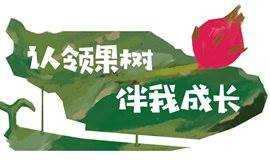 火龙果果树领养啦!!!