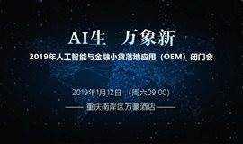 2019年人工智能与金融小贷落地应用(OEM)闭门会