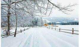 这里的冬天没有雪,但风月无边 | 冬至会员开放日